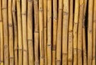 Gindie Bamboo fencing 2