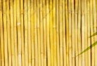 Gindie Bamboo fencing 4