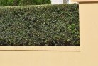 Gindie Decorative fencing 30